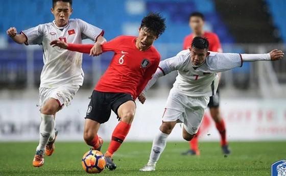 """Vòng loại U19 châu Á 2020: Chờ """"Phù thủy trắng"""" ra oai ảnh 1"""