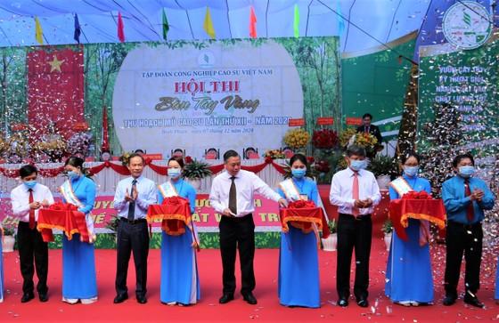 205 thí sinh dự Hội thi Bàn tay vàng thu hoạch mủ cao su ảnh 1
