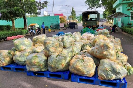 Biên phòng TPHCM tiếp nhận 4 tấn rau củ quả hỗ trợ cho người khó khăn ảnh 1