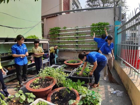 Chung tay xây dựng TPHCM là đô thị xanh, thân thiện với môi trường ảnh 8