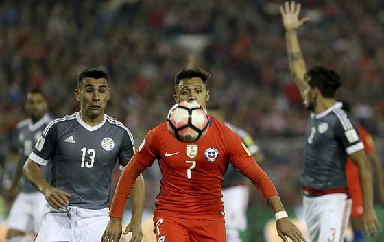 Vòng loại World Cup 2018: Argentina và Uruguay chia điểm, Brazil hạ Ecuador ảnh 2