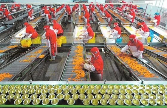 Xuất khẩu nông lâm thủy sản sẽ đạt 65 -70 tỷ USD vào năm 2030 ảnh 1