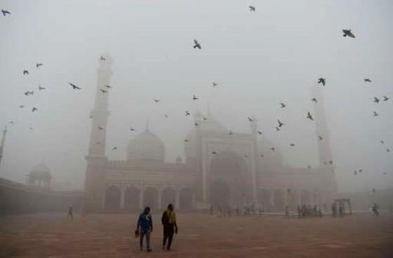 New Delhi đóng cửa toàn bộ trường tiểu học do khói mù ô nhiễm ảnh 2