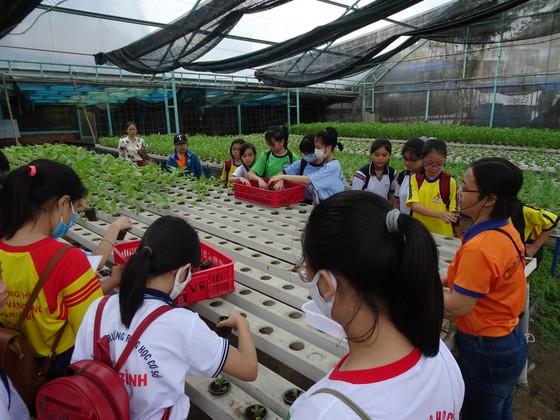 """Học sinh hào hứng trải nghiệm trồng rau, chăm sóc thú qua Cuộc thi """"Văn hay chữ tốt"""" do quận Tân Bình tổ chức  ảnh 4"""
