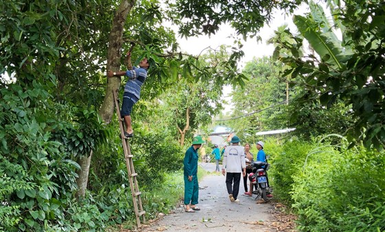 Người dân Lai Vung dọn đường sá đón ông Bảy trở về ảnh 4
