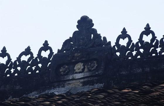 Độc đáo nhà trăm cột bằng gỗ quý tại Đồng Tháp ảnh 8