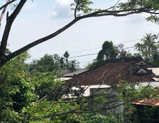 Độc đáo nhà trăm cột bằng gỗ quý tại Đồng Tháp ảnh 1