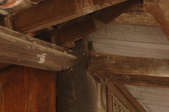 Độc đáo nhà trăm cột bằng gỗ quý tại Đồng Tháp ảnh 15