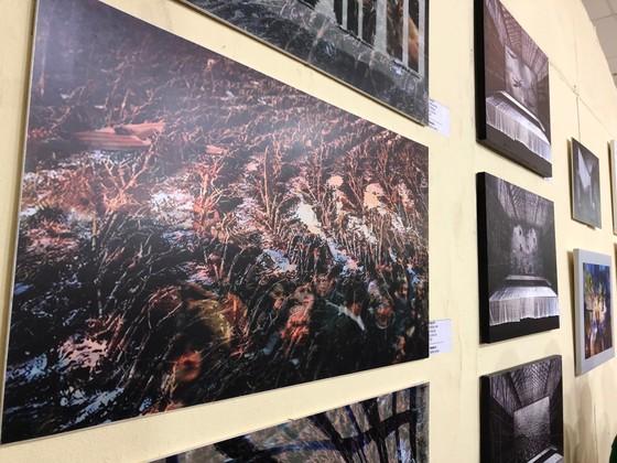 Triển lãm tranh đương đại Hungary tại Cần Thơ ảnh 2