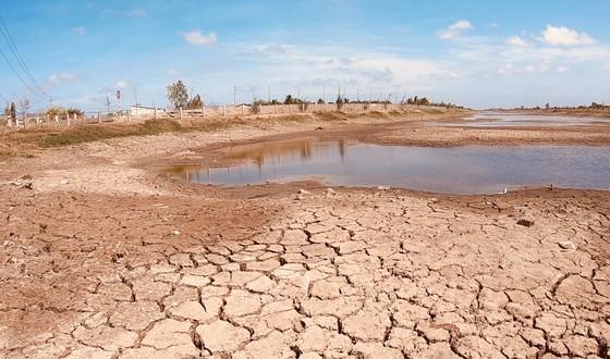 Ảnh hưởng bởi hạn mặn, hồ chứa nước ngọt tại Bến Tre sắp khô cạn ảnh 2