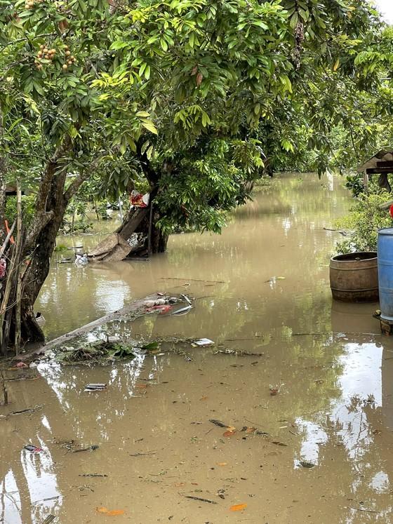 Bến Tre: Sạt lở nghiêm trọng ở cồn Phú Đa ảnh 3