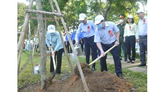 Quận 4 trồng hơn 1.200 cây xanh và tổng vệ sinh môi trường ảnh 1