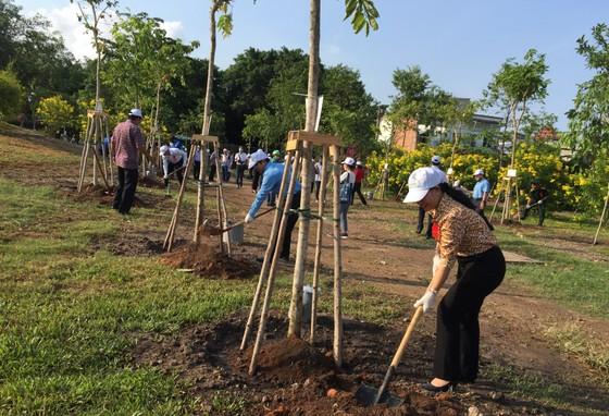 Quận 4 trồng hơn 1.200 cây xanh và tổng vệ sinh môi trường ảnh 3