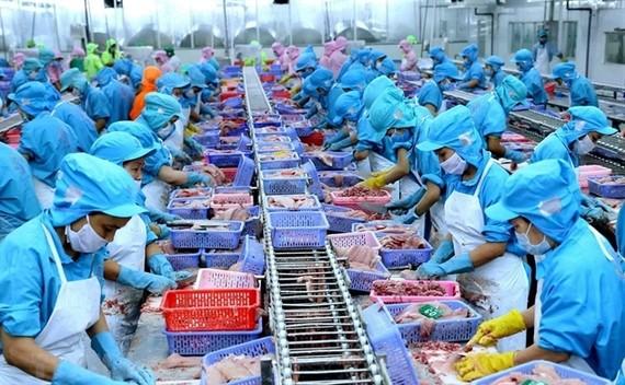 Thuỷ sản xuất sang Trung Quốc giảm liên tiếp vì dịch