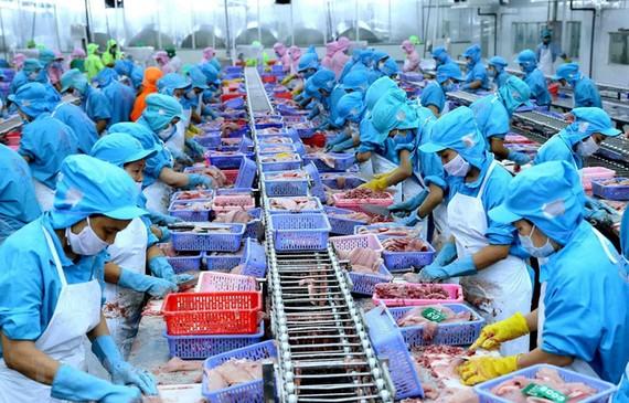 71% hàng hoá của Việt Nam sang EU được miễn thuế ngay khi EVFTA có hiệu lực.