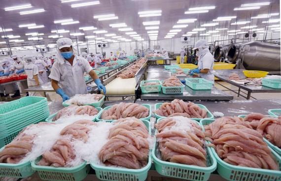 Đại dịch Covid -19 bùng phát mạnh tại khu vực trọng tâm của thủy sản Việt Nam từ tháng 6, gây áp lực đứt gãy chuỗi cung ứng thủy sản.