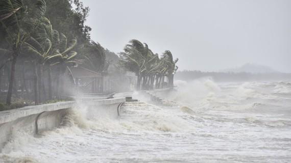 Dự báo ngày 18-9, bão sẽ ảnh hưởng trực tiếp đến khu vực ven biển các tỉnh từ Hà Tĩnh đến Quảng Ngãi, vùng tâm bão có khả năng đổ bộ vào đất liền các tỉnh từ Quảng Bình đến Đà Nẵng