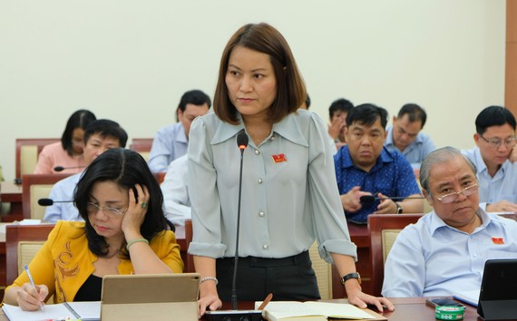 Đại biểu HĐND TPHCM phát biểu trong phiên thảo luận tổ tại Kỳ họp thứ 17 HĐND TPHCM khóa IX. Ảnh: VIỆT DŨNG