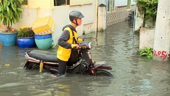 A street flooded due to high tides in HCM City's district 8 (Source: VNA)