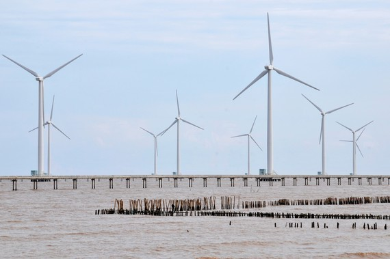 A wind power plant supplies electricity in Ca Mau (Photo: SGGP)