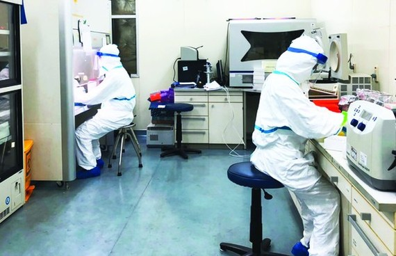 Vietnamese scientists can grow novel coronavirus in lab