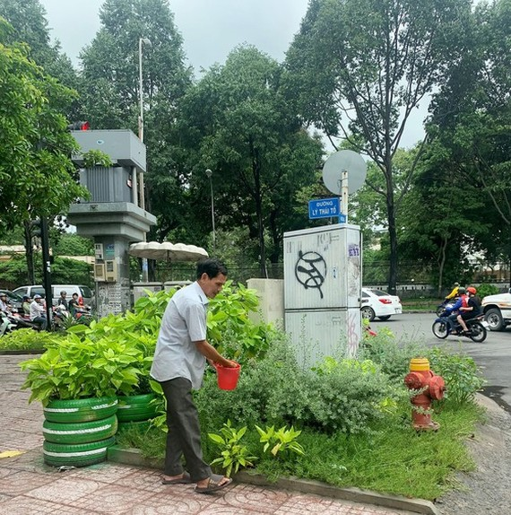 An elderly man is watering  trees and flowers in T-shaped intersection Nguyen Dinh Chieu – Ly Thai To in District 3 (Photo: SGGP)