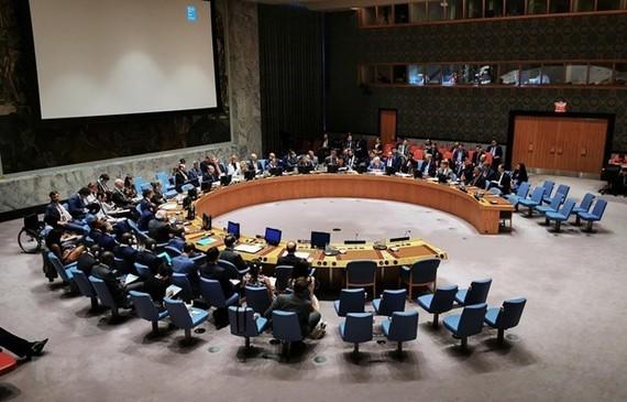 At a UNSC meeting (Photo: VNA)