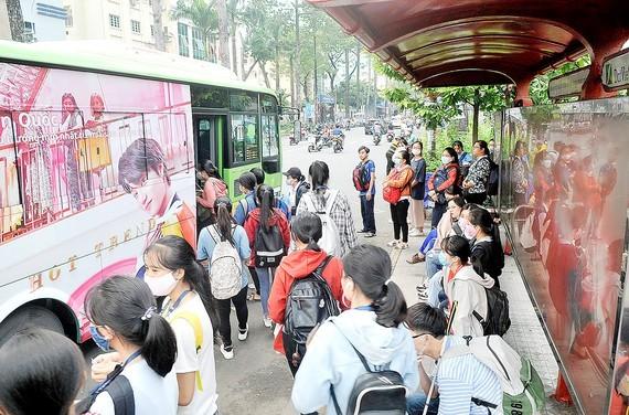 HCMC plans to develop public transport network