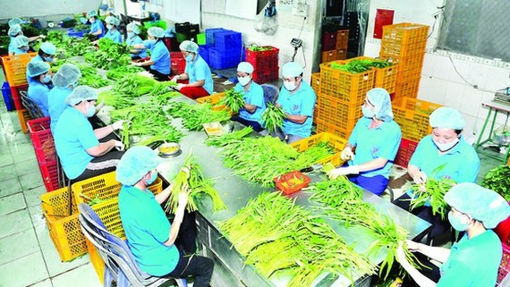 Agricultural exports to Thailand market surge