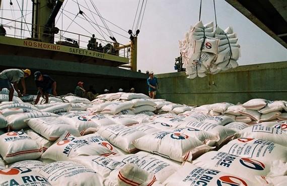 Vietnam exports 3.9 million tonnes of rice in seven months