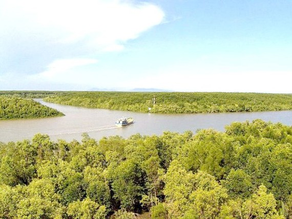 The famous Can Gio Mangrove Biosphere Reserve Area. (Photo: VNA)