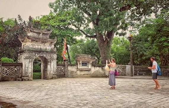 Foreign tourists in Vietnam (Photo: VNA)
