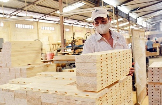 Vietnam to make rubberwood for sustainable exports: Vietnam Rubber Association