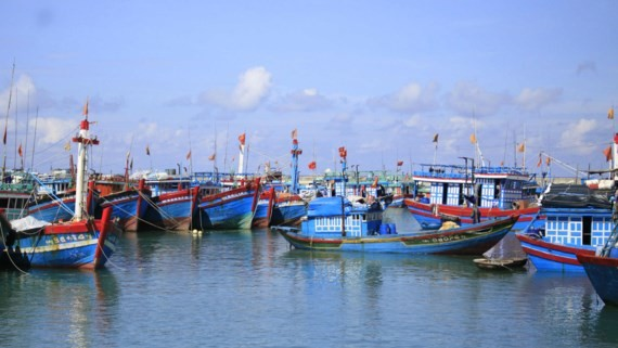 Fishing boats avoid storm in Ly Son Island.
