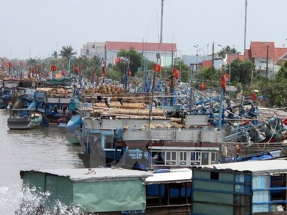 The tropical depression is moving towards the southern coast of the southernmost province of Ca Mau and is expected to directly affect coastal provinces from Ben Tre to Ca Mau and Kien Giang (Photo: VNA)