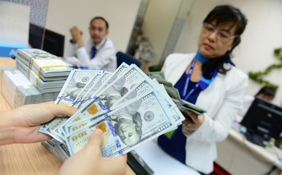 Dollar supply source is forecast to decline in the domestic market this year, given by weaker foreign direct investment (FDI) inflows and exports.