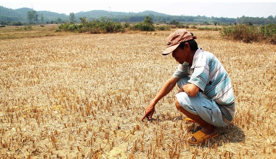 Severe drought, saline intrusion and lack of fresh water are prolonging in Mekong Delta provinces and cities