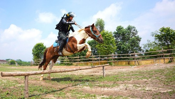 A performance of cavalry soldier on training ground