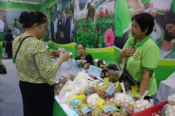 Garlics and shallots introduced at the recent show of Hanoi's OCOP products (Photo: VNA)