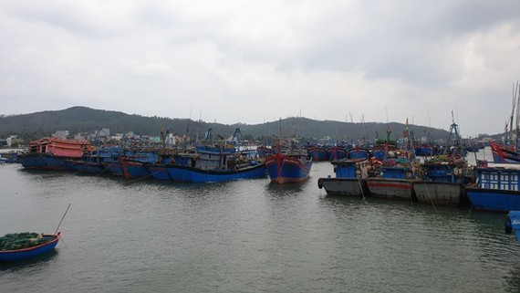Da Nang City bans all vessels going out to sea