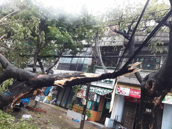 Typhoon Molave leaves 2 dead, heavy damage in Quang Ngai