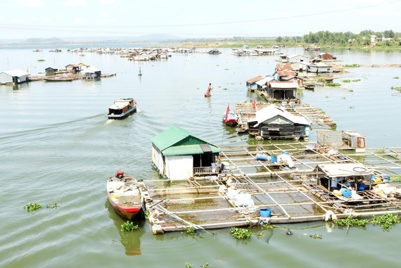Tri An Lake faces pollution challenge