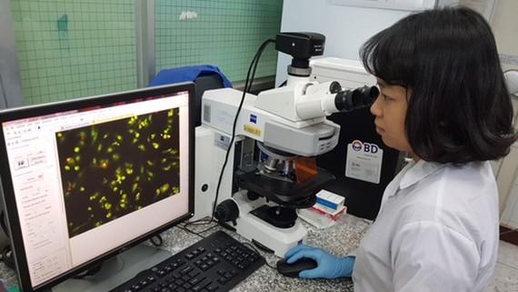 Thạc sĩ Mỹ Nương nghiên cứu cơ chế phân tử kháng ung thư của bài thuốc Nam Địa Long trên mô hình tế bào trong phòng thí nghiệm