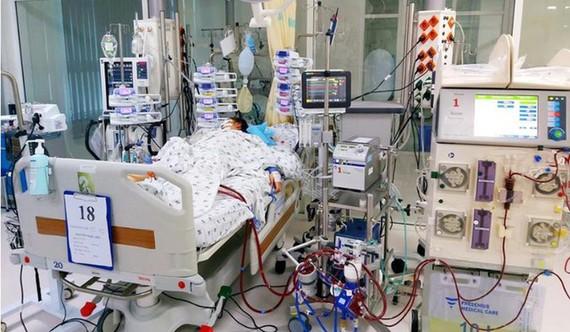 Bác sĩ thực hiện phương pháp ECMO kết hợp với lọc máu, đặt máy tạo nhịp, máy thở,... để cứu sống bệnh nhân.