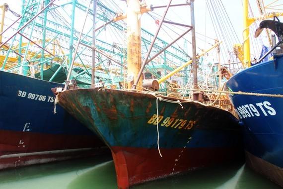 Tàu cá nằm bờ vì thủ tục nhiêu khê