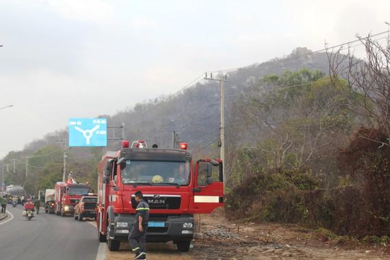 Cháy rừng ở núi Minh Đạm, tỉnh Bà Rịa - Vũng Tàu