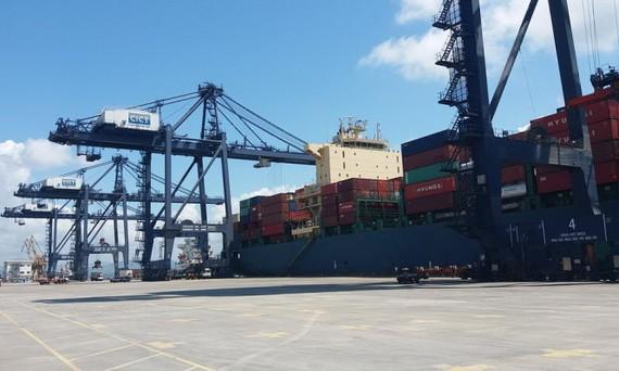 圖為丐麟碼頭卸船機在從 Huyndai Premium 大型貨船上卸貨。(圖源:德孝)