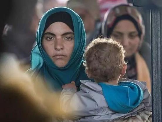 德國難民。(圖源:互聯網)