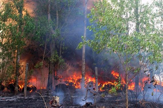 火警現場。(圖源:平安)