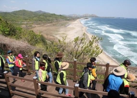 遊客在木棧道上徒步遊。(圖源:互聯網)